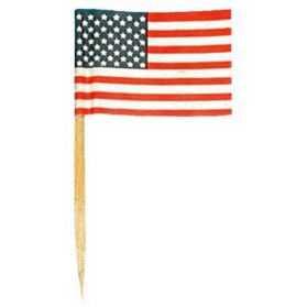 Mini drapeaux USA sur pique cocktail