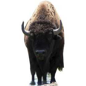 Figurine géante Bison