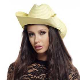 Chapeau deguisement de Ranger