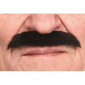 Moustaches noires pour se déguiser