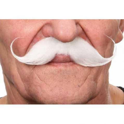Moustache pour se déguiser en écrivain