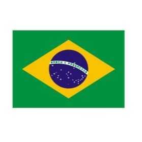 Drapeaux supporters brésiliens