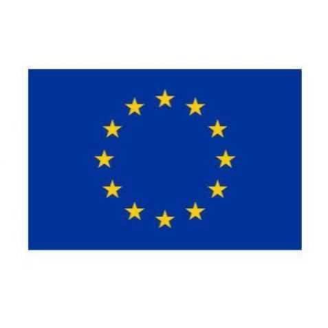 Drapeaux Europe à agiter
