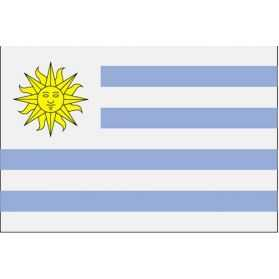 Déco de fête Uruguay