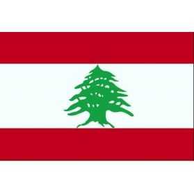 Kit déco de fête Liban