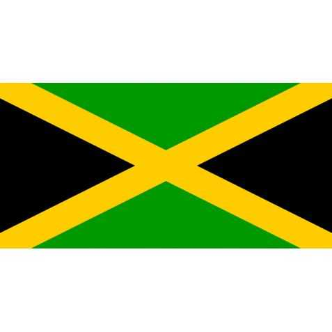 déco soirée à thème reggae