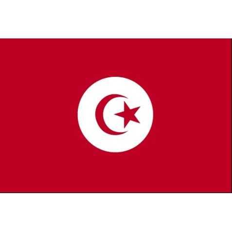 déco anniversaire adulte tunisien