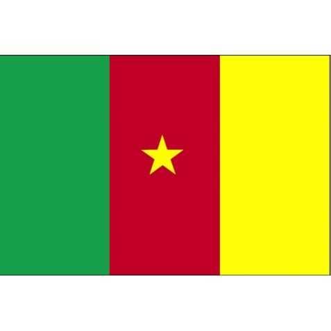 guirlandes à fanions drapeau Cameroun