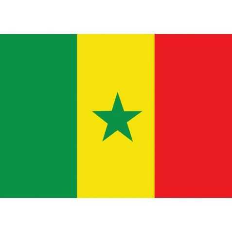 guirlande drapeau Sénégal