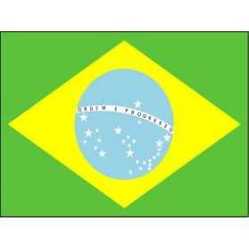 Drapeau Brésilien avec oeillets