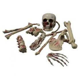 Sac d'os avec Crâne