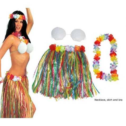 1 Kit accessoires Adulte pour se déguiser en danseuse Hawaïenne