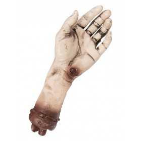 main coupée en plastique pour décor horreur