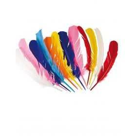 12 plumes d'Indien multicolores