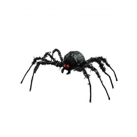 Fausse Araignée géante