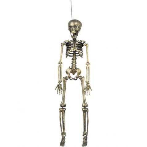 Squelette à suspendre