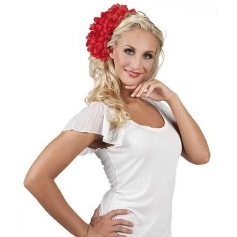 Fleur rouge Danseuse de Flamenco