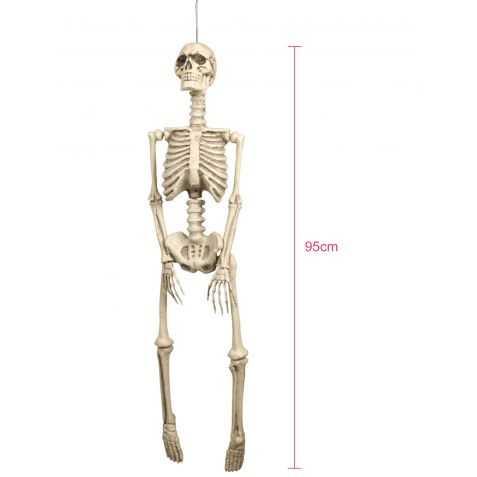 Grand Squelette à suspendre