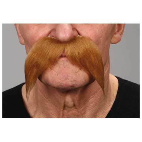 Moustache blonde gaulois