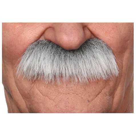 Moustache grise de Vieillard
