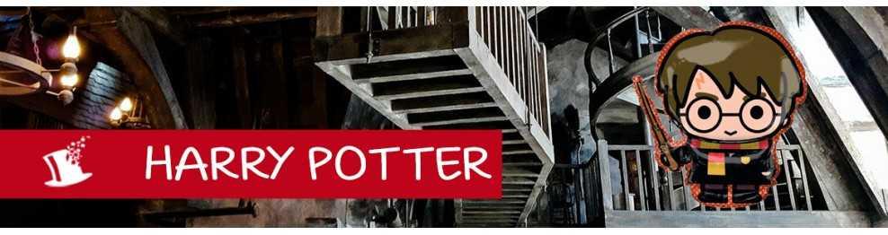 déco anniversaire Harry Potter