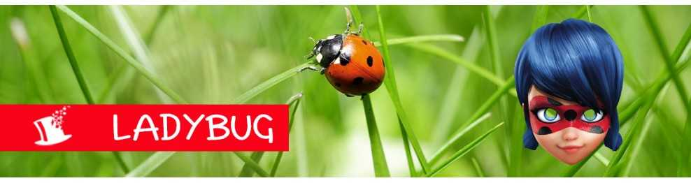 déco anniversaire Ladybug