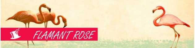 Soirée à thème Flamant rose